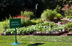 White House Kitchen Garden Stock Image