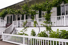 White house with loft with grapes and benches Stock Photo