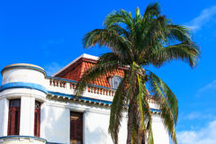 White house and palm tree Royalty Free Stock Photos