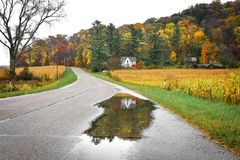 White House Reflected in a Rain Puddle on the Road in Fall