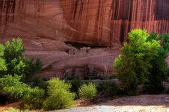 White House Ruins Canyon De Chelly Royalty Free Stock Image