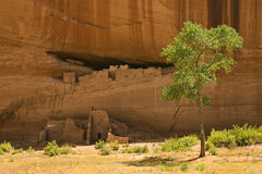 White House ruins, Canyon de Chelly Royalty Free Stock Photo