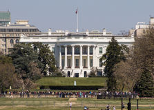 The White House in Spring Stock Image