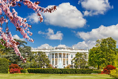 The White House at spring Royalty Free Stock Images