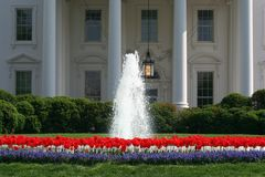 White House Tulip Garden. Tulip Garden at the North entrance to the White House in Washington, DC Stock Photography