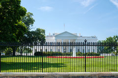 White house. View of the White house in Washington D.C Stock Photography