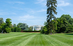 White house. View of the White house in Washington D.C royalty free stock images