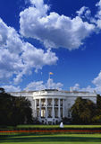 The White House, Washington D.C. Stock Image