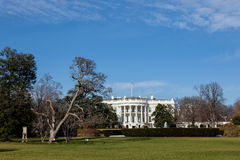 The White House in Washington DC on Sunny Winter Day Stock Image