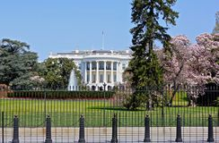 White House Washington DC Royalty Free Stock Photography