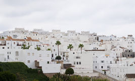 White houses with palm tree on the hillside. Architectural complex consisting of white houses next to each other on top of a mountain, is situated in the Royalty Free Stock Image