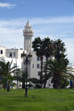 White houses,palm trees and minaret in La Goulette,Tunisia Royalty Free Stock Photo