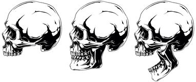 White human skull in profile projection set. A vector illustration of White scary graphic human skull in profile projection set Royalty Free Stock Images
