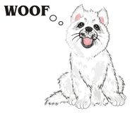 Puppy say woof. White husky sit with word woof Stock Photos
