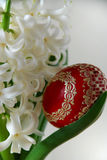 White hyacinth and easter egg Royalty Free Stock Photos