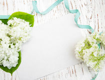 White hydrangea with card Royalty Free Stock Image
