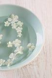White hydrangea flowers floating Royalty Free Stock Image