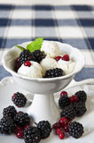White ice cream with berries and leaf of mint  in white porcelai. N bowl on checkered tablecloth Royalty Free Stock Photo