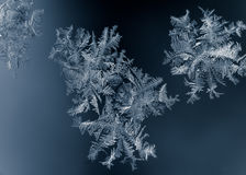 White ice crystals Royalty Free Stock Photo