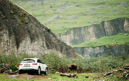 White Infiniti FX30d turbo diesel SUV Car On Off Road In Spring Stock Photos