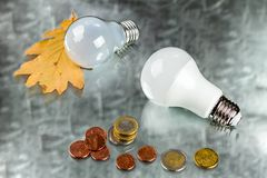 White innovation energy-saving LED bulb, glow-lamp and coins. On silvery background Stock Image