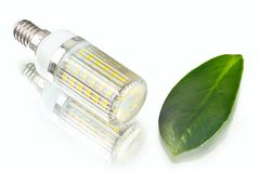 White innovation energy-saving LED bulb, glow-lamp, dry and fres. H leaf on white background Stock Photo