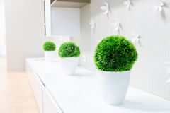 White interior with grass Stock Photo