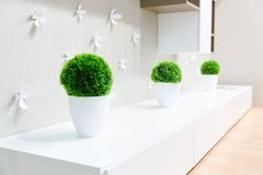 White interior with grass Stock Images
