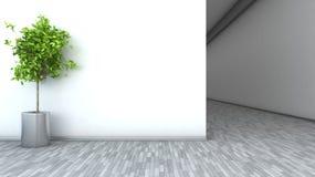 White interior with plant. 3D illustration Stock Photos