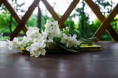 White Jasmine flowers with green leaves and yellow notebook on dark brown wooden table. Flat lay, top view, copy space for text. royalty free stock photo