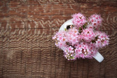 White jug with bouquet of pink flowers on wooden background Stock Image