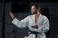 White Karate Fighter Stock Image