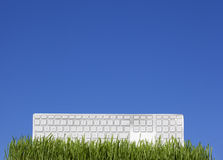 White keyboard on the grass Stock Photo