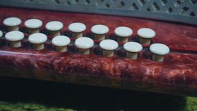 White keys of the little accordion close-up, the passage of the camera,. The white keys of the little accordion close-up, the passage of the camera, to the side stock footage