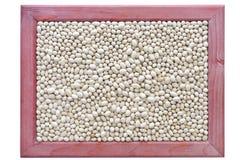 White kidney bean Royalty Free Stock Photo