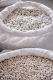 White kidney bean in a bags Stock Photos