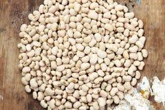 White kidney beans Royalty Free Stock Photo