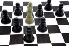 White King surrounded Royalty Free Stock Images