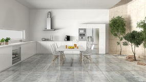 White kitchen with inner garden Royalty Free Stock Images