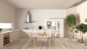 White kitchen with inner garden, minimal interior design Stock Image