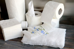 White kitchen paper towel, toilet paper, paper tissue on a dark wooden table Stock Photo