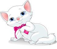 White kitten. Cute blue-eyed white kitten Royalty Free Stock Image