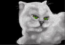 White kitten with green eyes Royalty Free Stock Images