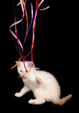 White kitten playing with ribbon Stock Photo
