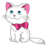 White kitty. With pink bow Stock Photo
