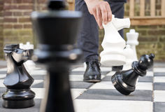 White Knight captures black pawn Royalty Free Stock Image