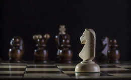 White knight chess Royalty Free Stock Photo