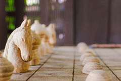 White knight chess. Stock Images