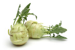 White kohlrabi Stock Photos