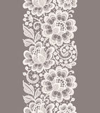 White Lace. Floral Seamless Pattern. royalty free stock photography